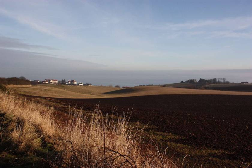 walk to Coldingham Bay
